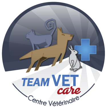 Team Vet Care